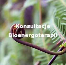 Konsultacje - Bioenergoterapii