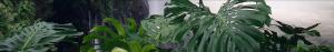 waterfall_leaves