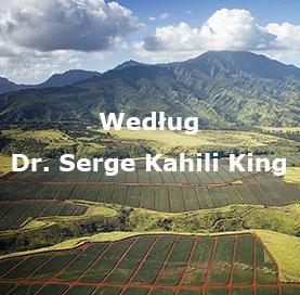 wedlug_serge_kahili